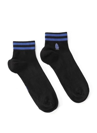 Lufian Steffy Çorap  Siyah
